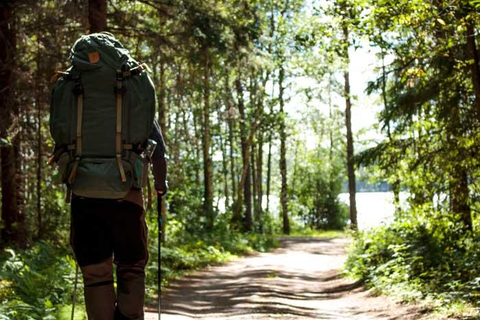 Vandring genom skog i Bergslagen
